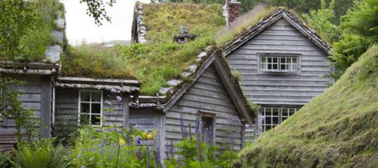 Végétaliser une toiture